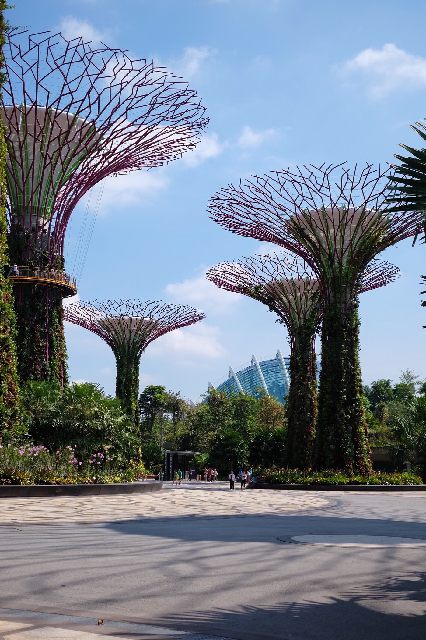 Gardens by the Bay — Singapore