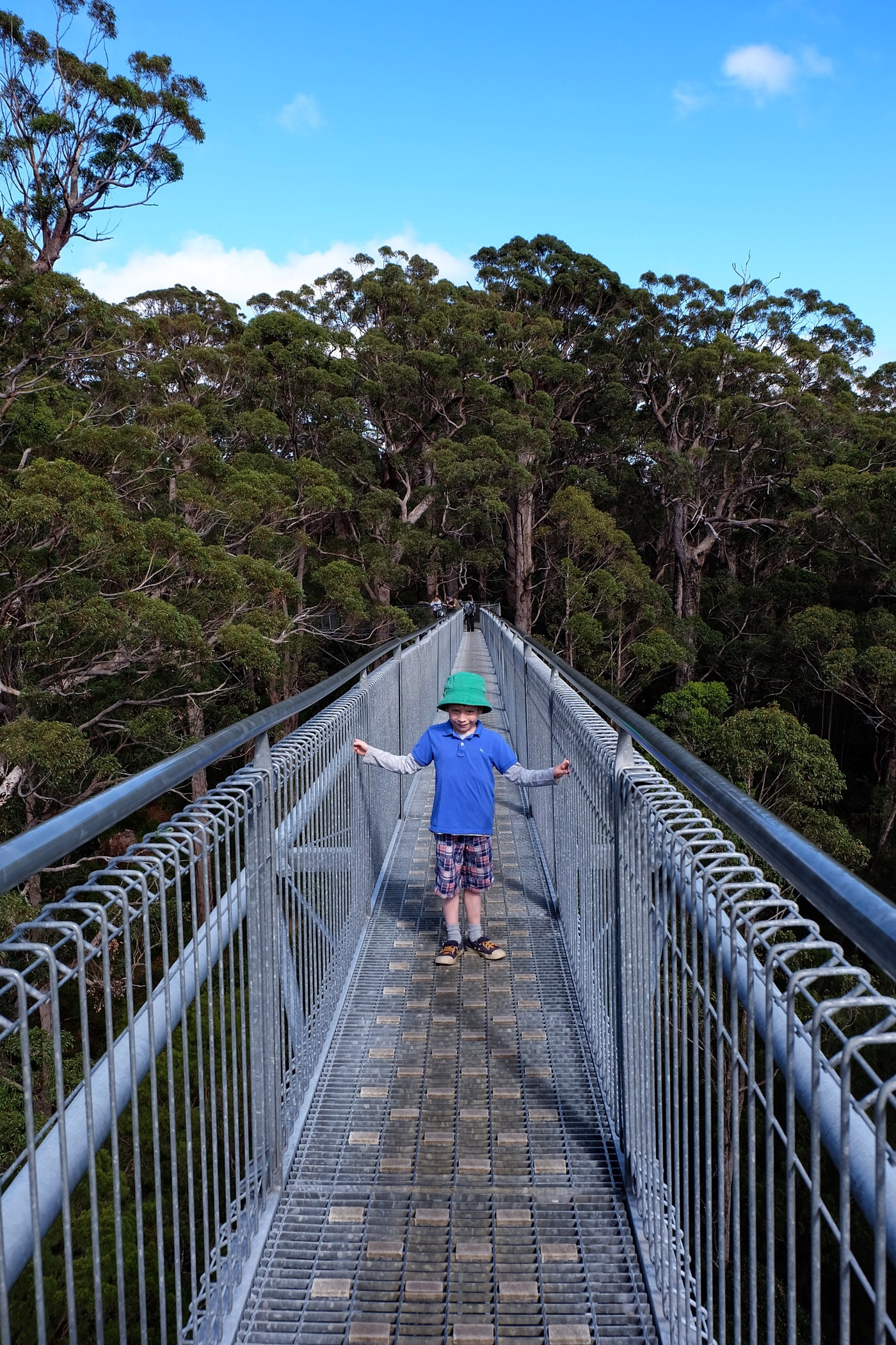 Rowan at the Valley of the Giants tree top walk — Walpole, Western Australia