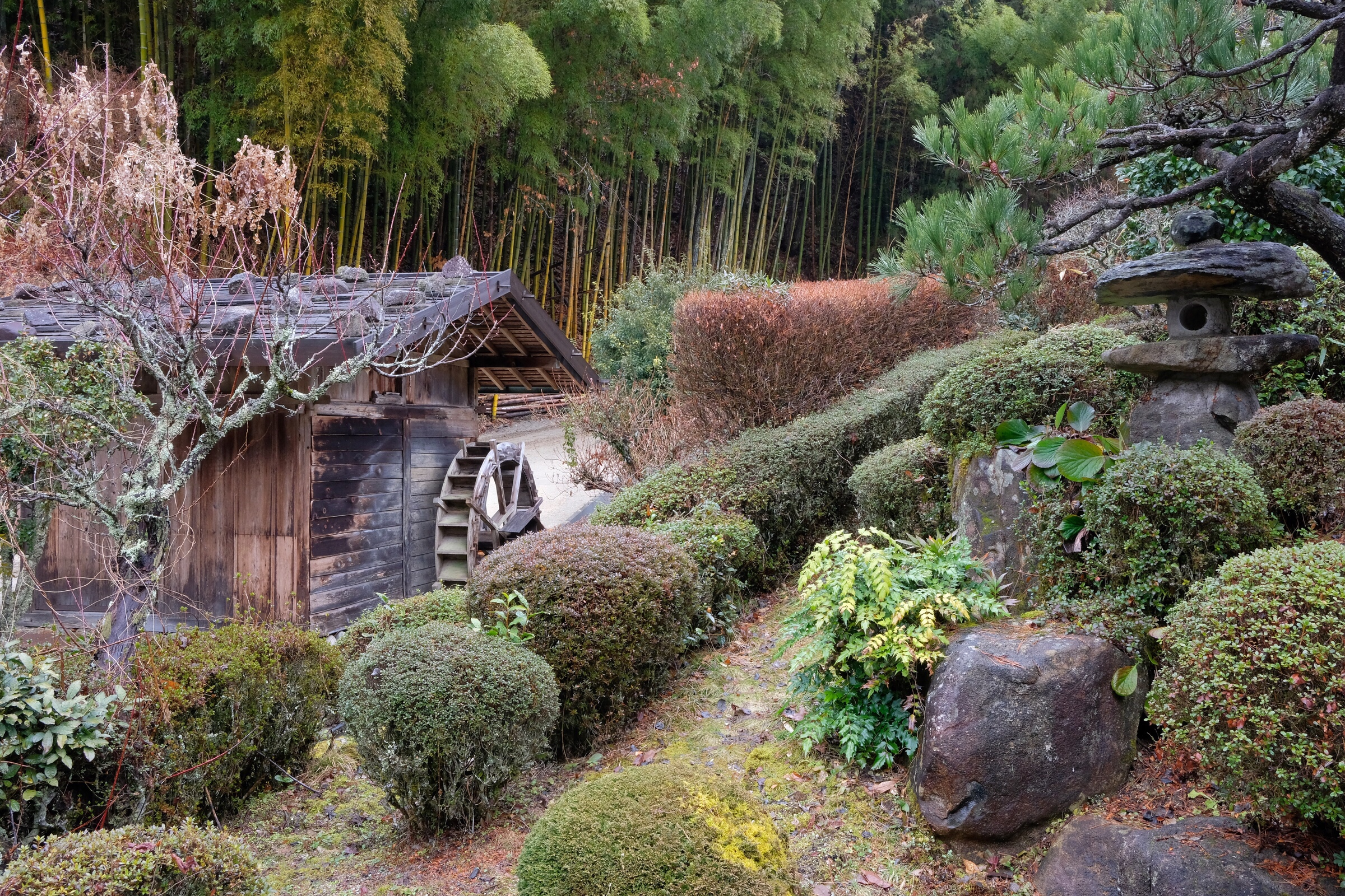 Japan – Nagiso – Farm